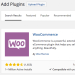 How to implement WooCommerce in own website